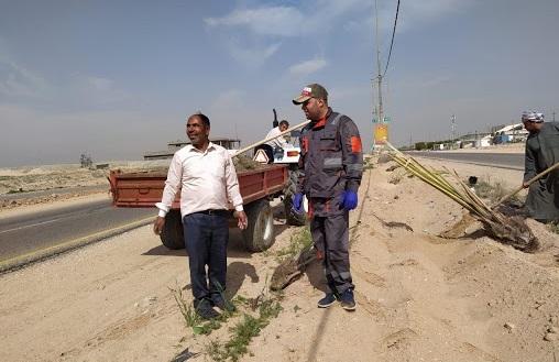 """الانتهاء من زراعة 13 الف شجرة في طريق """"ياحسين"""" للزائرين بين كربلاء والنجف"""