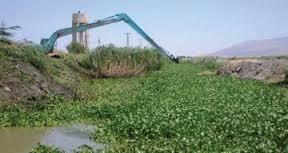 العراق يدعو اليونسكو الى المساهمة بمكافحة زهرة النيل في الاهوار