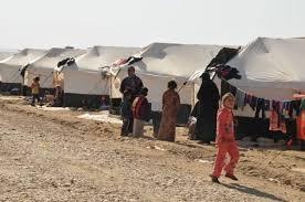 نصب كرفان للمفرزة الطبية في مخيم عودة نازحي الكرمة