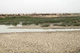 ميسان تحذر من جفاف الاهوار وتطالب بتأمين حصتها المائية