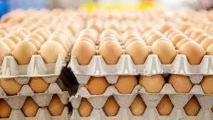 """لجنة الزراعة والأهوار تكشف الأسباب الحقيقية وراء الأسعار """"التنافسية"""" لبعض البضائع والمحاصيل المستوردة"""