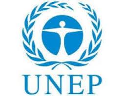 انتخاب العراق نائبا لامين عام الامم المتحدة لشؤون البيئة
