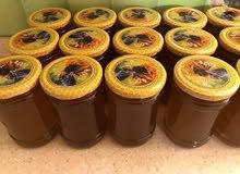 كربلاء تنتج ١٣٠ طن من العسل الطبيعي