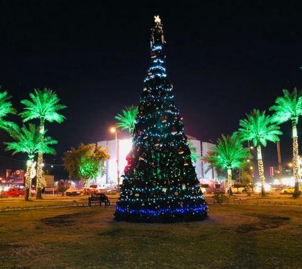 امين بغداد يوعز بنصب اشجار الميلاد احتفاءً باعياد الميلاد