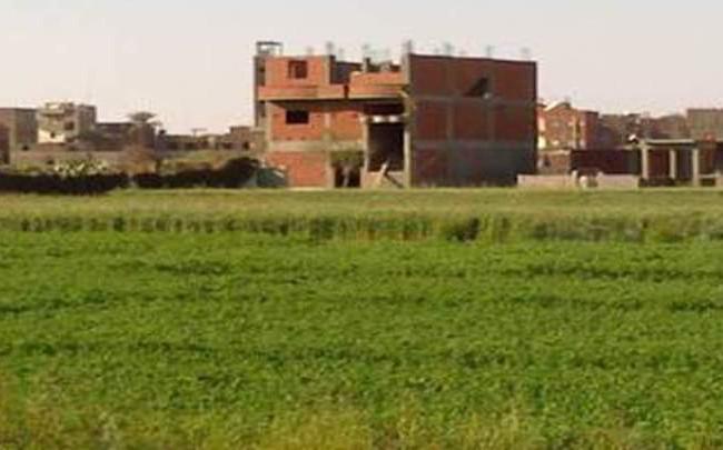 محافظ بغداد : قرارات في تحويل جنس الأراضي من زراعي الى سكني