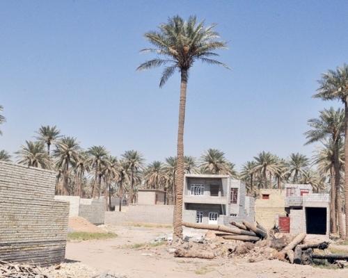 الكعبي: تحويل جنس الاراضي يعطي حرية واسعة للمحافظات وامانة بغداد