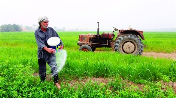 الجمعيات الفلاحية: رفع سعر الصرف سبب خسارة كبيرة للفلاح والزراعة